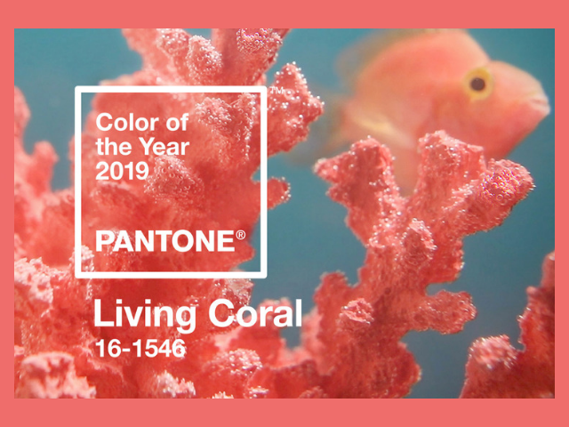 Pantone Colour of the Year Living Coral
