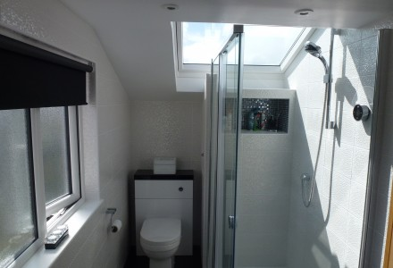 Shower with Velux over
