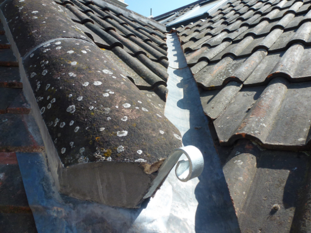 roof inspection repairs winter