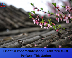 Roof care roof repair spring MPK Lofts